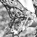 ジャガーンネタバレ73話・74話|井本の蝶が強すぎて蛇ヶ崎と三日土が太刀打ちできない!