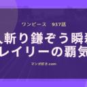 ワンピースネタバレ937話(確定速報)|人斬り鎌ぞうをゾロが瞬殺!おトコは生存確認!