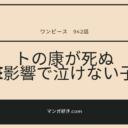 ワンピースネタバレ942話(確定速報)|トの康が処刑!笑う子供はSMILEが影響!?