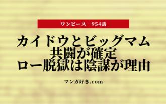 ワンピースネタバレ954話【最新確定】ビッグマムとカイドウが共闘!四皇が手を組んだ!