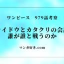 ワンピース979話【最新ネタバレ考察】カイドウ家族会議でカタクリと会話!?
