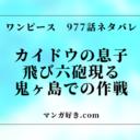 ワンピース977話【完全ネタバレ確定】考察|カイドウの息子!飛び六砲現る!