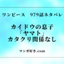 ワンピース979話【完全ネタバレ】カイドウの息子「ヤマト」|ルフィが戦闘開始!
