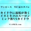 ワンピース987話【確定ネタバレ】988話の考察 カイドウに流桜効く。ミンク族変身