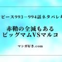 ワンピース【最新話】993話の確定ネタバレ|994話考察|赤鞘の侍全滅